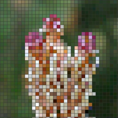 Pink fir cone mosaic