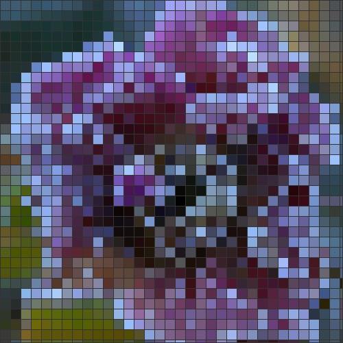 Winter rose mosaic