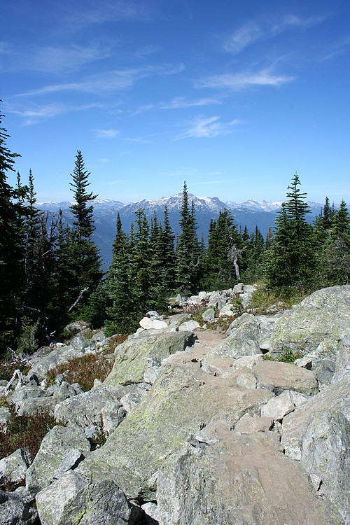 Blackcomb hike