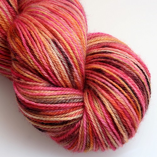 Blissful sock echinacea main